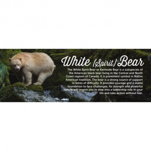'White (Spirit) Bear' Bookmark